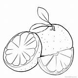 Grapefruit Coloring Pages Printable Plants sketch template
