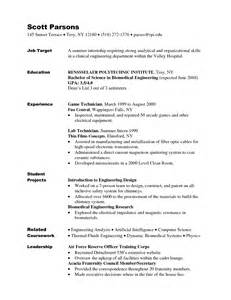 exle of a killer resume best it resume writing services