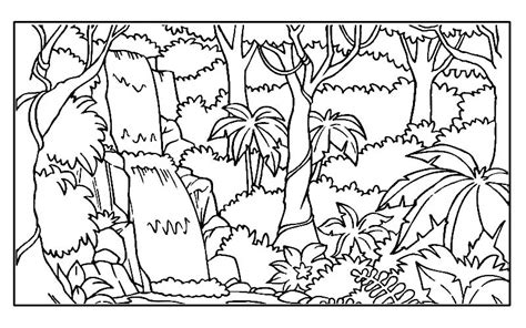 rainforest habitat coloring pages coloring pages