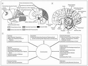 Image Result For Access Consciousness Manual Pdf