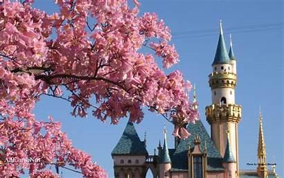 Disneyland Wallpapers Px