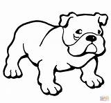Boxer Dog Drawing Coloring Pages Printable Dogs Clipartmag sketch template
