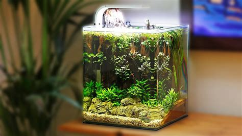 Aquascape Nano by Beautiful Low Tech Nano Aquascape Non Co2