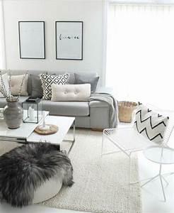 Salon Gris Blanc : d co salon superbe salon gris et blanc canap gris perle couleur peinture salon blanc t ~ Dallasstarsshop.com Idées de Décoration