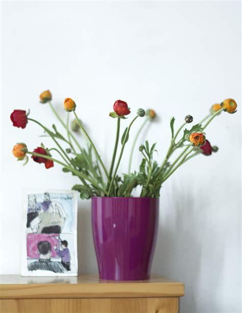 veca vasi come scegliere e abbinare i colori dei vasi indoor il