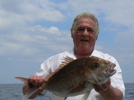 kawhia kaos on the fishing website discussion forums