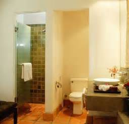 small bathroom designs with walk in shower walk in shower designs ideal contemporary bathroom design solution