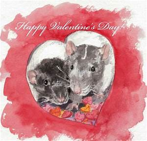 119 best images about Rats Love Hearts on Pinterest ...