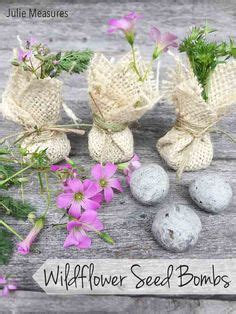 How Make Seed Bomb Teaching Learning