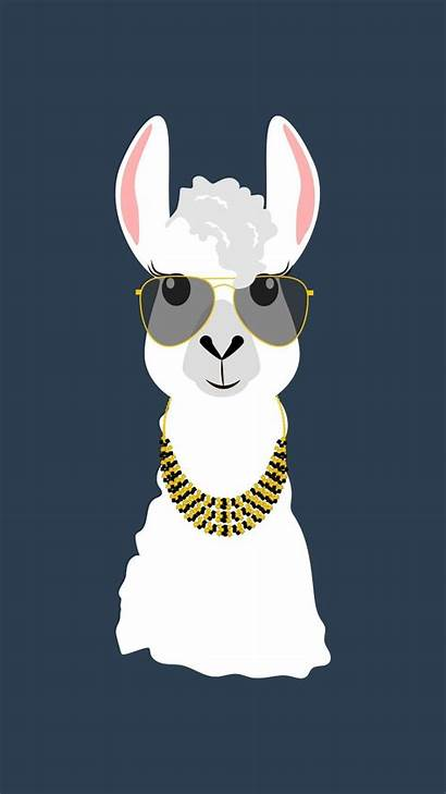 Llama Cute Wallpapers Android Screen Backgrounds Screenshot