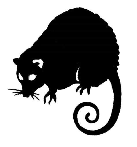 opossum clipart possum clipart