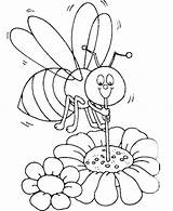 Bee Coloring Honey Sucking Bees Colouring Printable Busy Bible sketch template