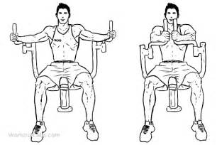 butterflies pec deck seated machine flyes workoutlabs