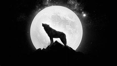 Wolf Moon Desktop Phone Screen