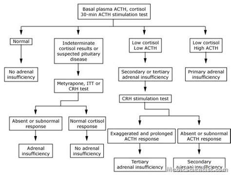 laboratory tests  adrenal functions medicscientist