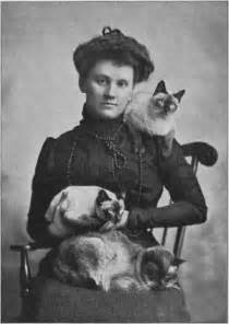 history of cats siamese cat