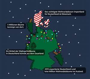 Wann Stellt Man Weihnachtsbaum Auf : best 28 seit wann gibt es den weihnachtsbaum sure 16 106 spricht von g best 28 wann stellt ~ Buech-reservation.com Haus und Dekorationen