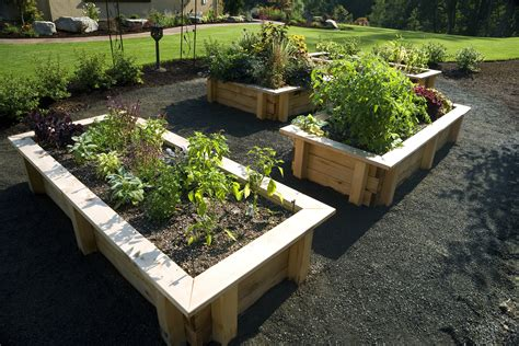 gardening tips ideas projects at home