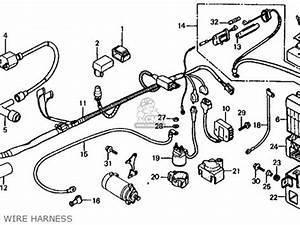 Honda Trx125 Fourtrax 125 1986  G  Usa Parts List