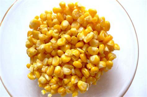mais cuisine maïs doux au jardin interrogations en cuisine blogbio