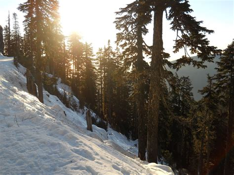 grouse mountain british columbia canada in the winter we went