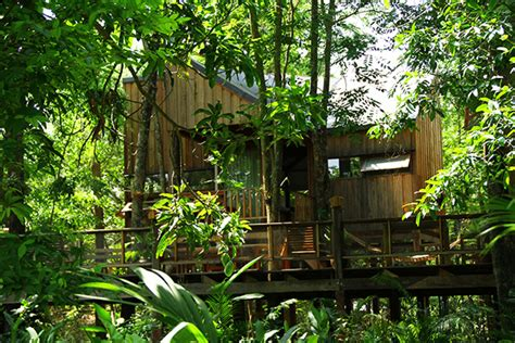 nature  forest house  thailand home design  interior