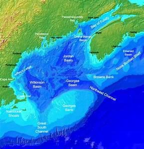 Gulf of Maine - Wikipedia