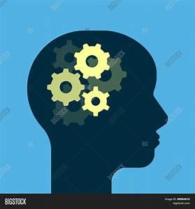 Gears Working Brain. Get Smart. Vector & Photo | Bigstock