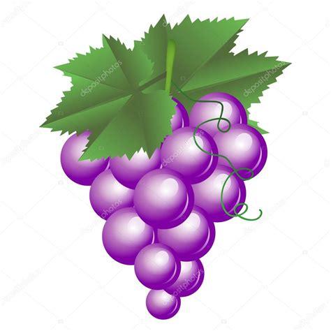 imagenes de unas uvas animadas ilustraci 243 n de vector