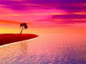 Pink Sunset wallpaper | 1024x768 | #6766