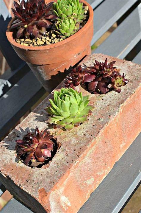 cool diy ideas  creating garden  backyard projects