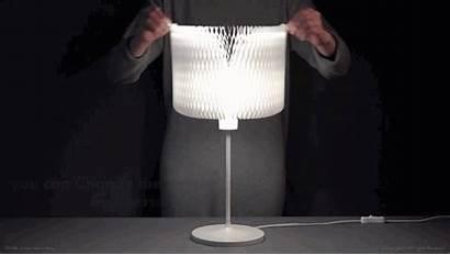Kinetic Lamp Winning Award Elegant Delight Putting