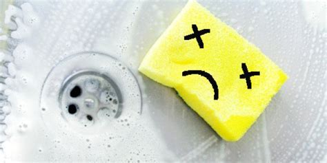 Your Kitchen Sponge Is As Revolting As It Smells   HuffPost