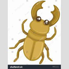 Illustration Isolated Cartoon Beetle On White Stock Illustration 47855089 Shutterstock
