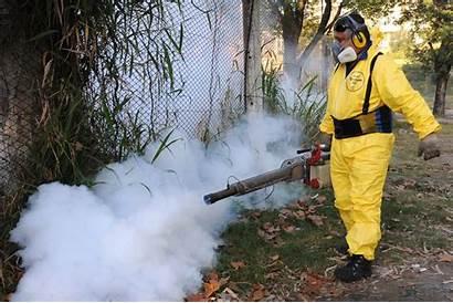 Control Vectores Fumigacion Plagas Rosario Ar