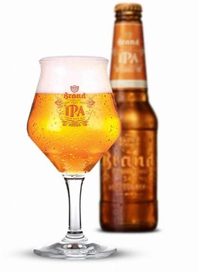Ipa Bier Glas Fles Rib Roast Recensie