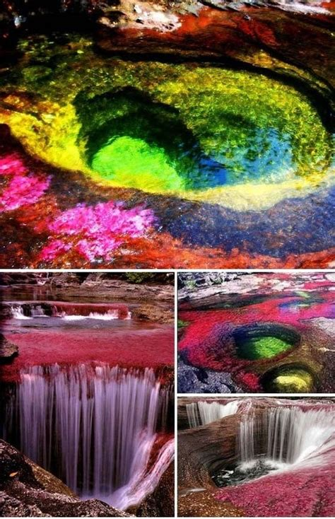 river colors the five color river colombia a whole new world