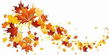 Image result for fall leaves image