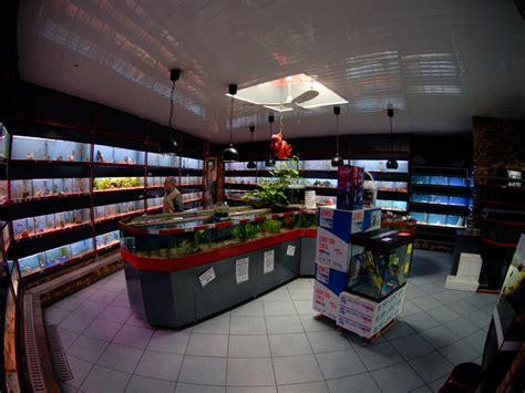 notre magasin vente de plantes de poissons et mat 233 riel pour aquarium aux poissons exotiques