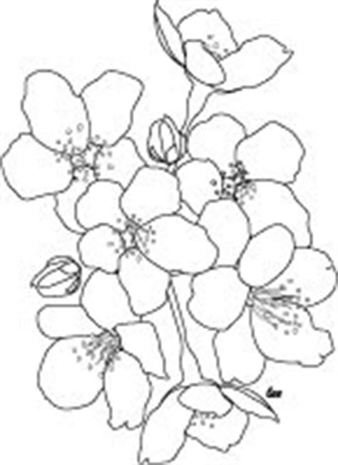 Adult Coloring Books & Designs: Japanese Cherry Blossoms Coloring Page