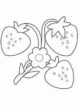 Strawberry Coloring Ausmalbilder Flower Truskawki Malvorlagen Kolorowanki Bestcoloringpagesforkids Pobrania Colorear Erdbeere Colouring Dibujos Printable Erdbeer Berries Fresa Miscellaneous Kinder Books sketch template