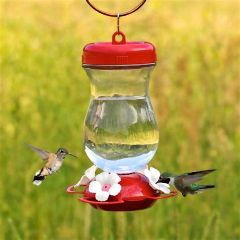 best hummingbird feeder pet 132tf 24 ounce glass top fill