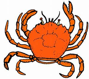 Baby Crab Clipart - The Cliparts