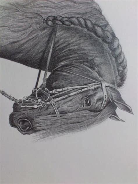 friese zeichnungen pferde friese von kleinekuenste bei