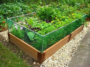 Raised Garden Bed Rabbit Fence  Gardenista