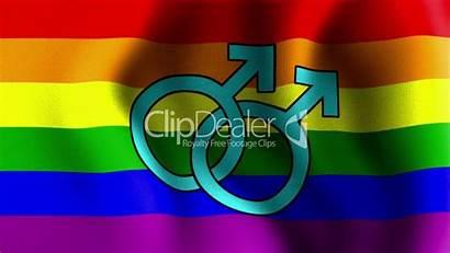 Pride Desktop Wallpapers Gay Flag Screensaver Wallpapersafari