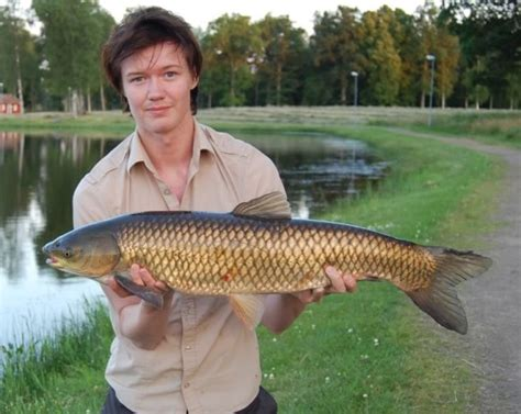 carp grass florida fish fishing catch most ontario hunting did difficult lake these