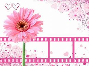 Pink, Backgrounds, Wallpapers