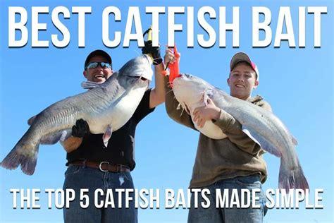 catfish bait  top  catfish baits  simple