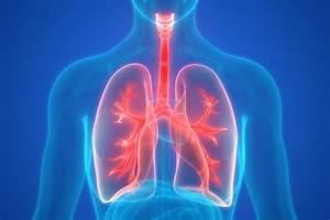 Lung Cancer Symptoms  Treatments  U0026 Causes